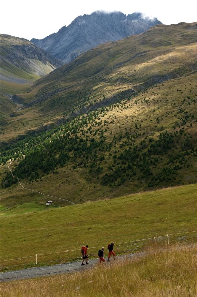 Passeggiate in montagna Livigno