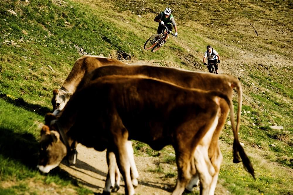 Bike park Italia Livigno Mottolino